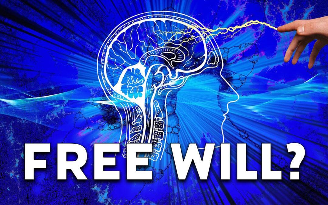 Der freie Wille und bewusste Entscheidungen